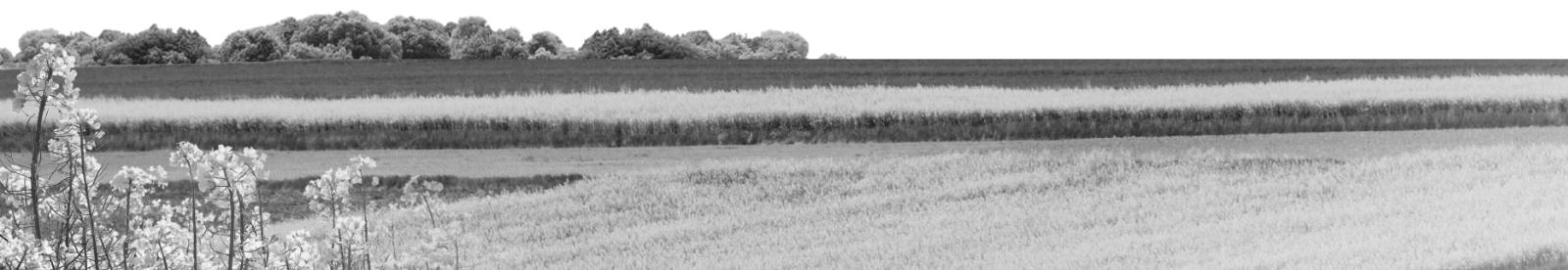 Oferta Łódzkiego Ośrodka Doradztwa Rolniczego