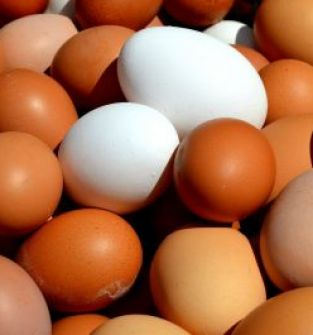 Jaja kremowe