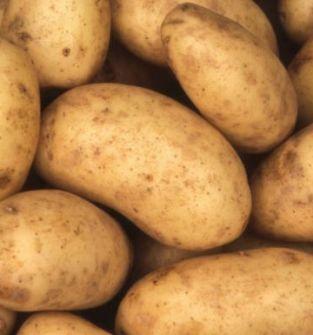 Cebula, ziemniaki jadalne