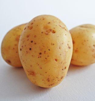 Sprzedam młode ziemniaki, odmiana Riviera,    1kg/3,50 zł