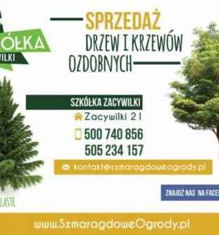 Drzewa i krzewy ozdobne, kamień ogrodowy oraz kora sosnowa