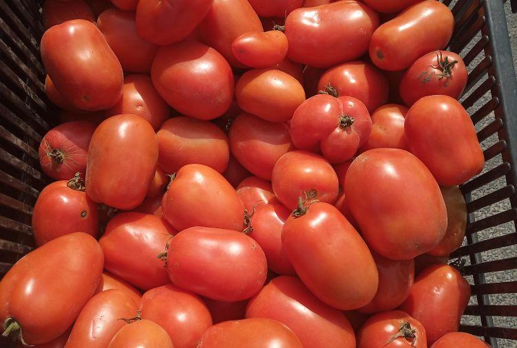 Kapusta szatkowana, pomidor, marchew, buraczek czerwony